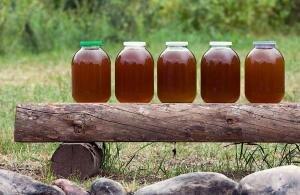Мёд чистый экологический